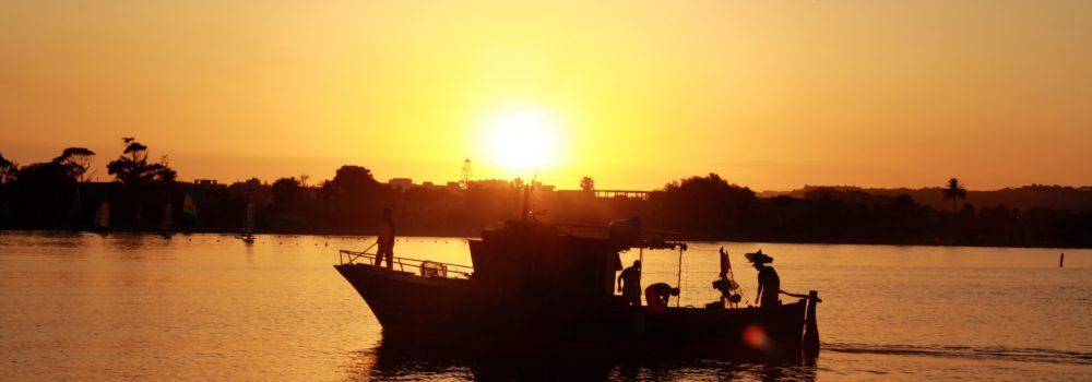boat-353049
